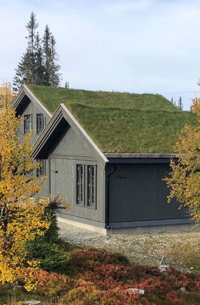 Bilde av hytten fra utsiden på sensommeren. Finalist nummer 8 årets hyttepris.